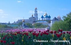 Свято-Троицкая Сергиева Лавра с тюльпанами