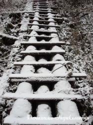 Лестница в ...
