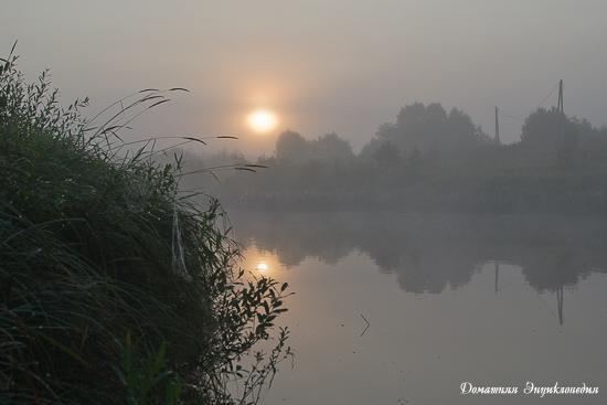 Отчёт о рыбалке 24-29 июля 2016 года. Тверская область, река Медведица.